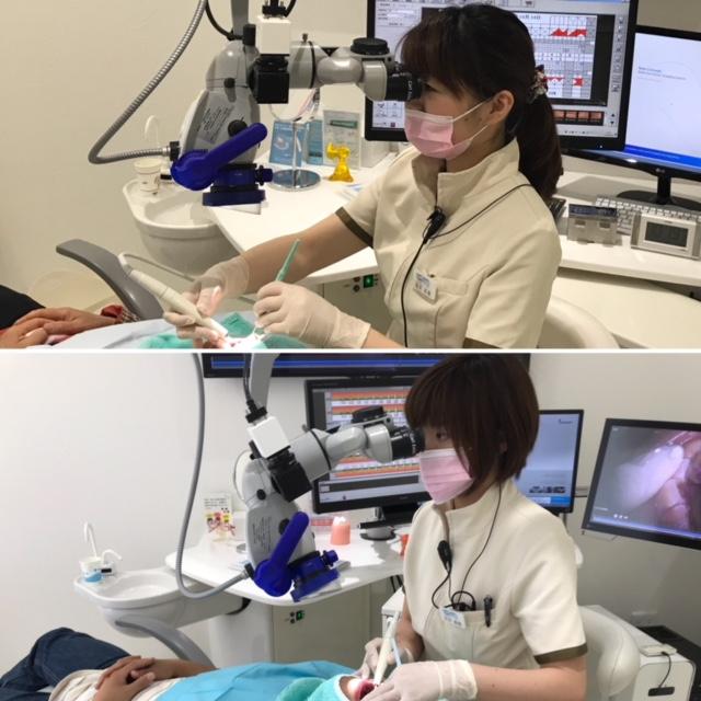 歯科衛生士 マイクロスコープ